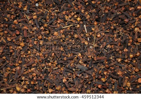PUTRAJAYA, MALAYSIA -NOVEMBER 01, 2015: Clove or the scientific name known as S. aromaticum