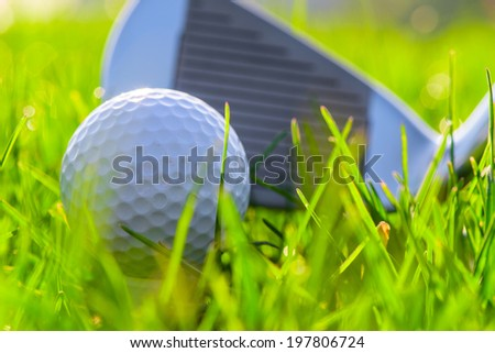 putter and golf ball before impact - stock photo