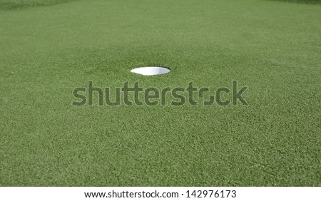 Putting green with the hole