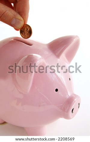 Putting money into the piggy bank - stock photo