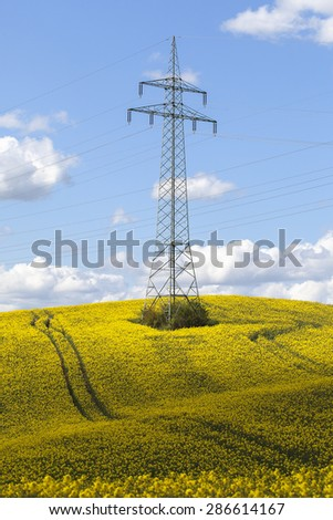 Pylon - field of canola