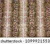 python pattern  piton texture ...