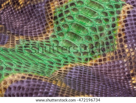 Python snakeskin leather, snake skin, texture, animal, reptile