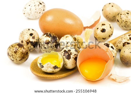 Quail and hen eggs in a wooden spoon isolated on white background - stock photo