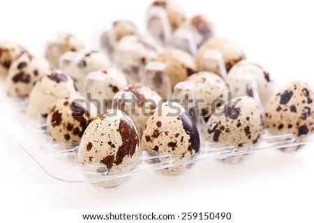 quail egg Isolated on white background - stock photo