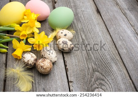 Quail eggs and daffodils on weathered wooden background - stock photo