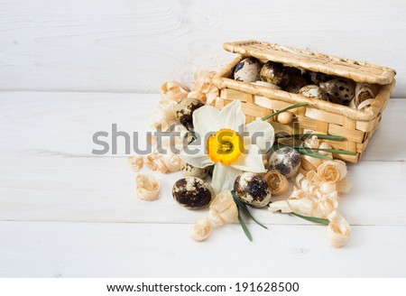 Quail eggs in a basket with daffodil on wooden background. - stock photo