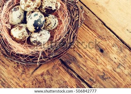 Quail eggs in nest on wood background