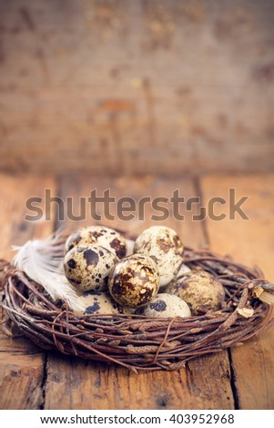 Quail Eggs in Nest on wood background with copy space