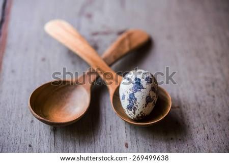 quail eggs in wood spoons - stock photo