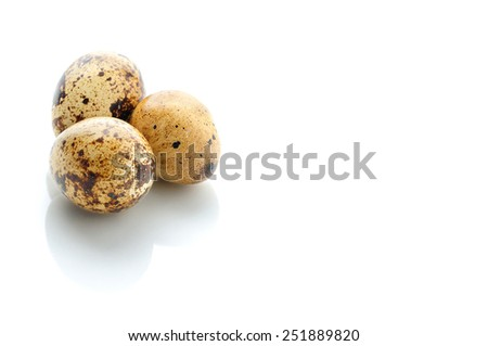 quail eggs isolated on white with place for sample text - stock photo