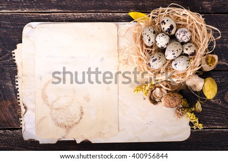 Quail nest with spotted eggs, dried plants and vintage paper on a wooden  background. Free space for your text. - stock photo
