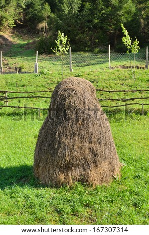 Quaint small conical haystack in a lush green rural pasture with a very rustic wooden fence behind - stock photo