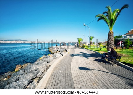 Quay of the island with palm trees shot with a blurred background
