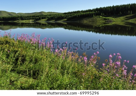 Quiet lake, green forest, grass covered mountain... Ideal for background material. - stock photo