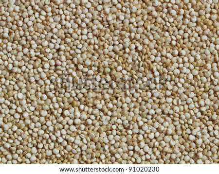 Quinoa grain - close-up, can be used as a background