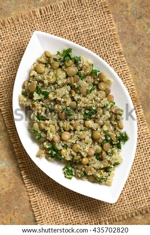 Quinoa salad with lentils and parsley on plate, photographed overhead on slate with natural light - stock photo