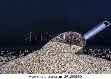 Quinoa seeds collected with a metal shovel