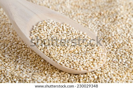 quinoa seeds on a wooden spoon