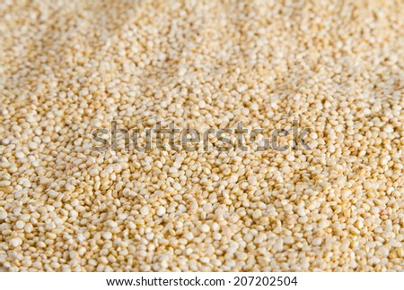 quinoa seeds texture - stock photo