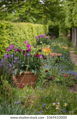 Quintessential English Country Garden Scene Landscape Stock Photo ...