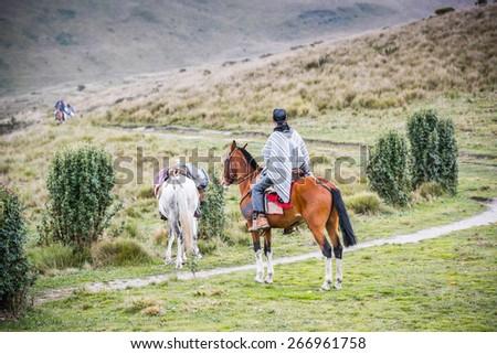 QUITO, ECUADOR - JAN 4, 2015: Unidentified Ecuadorian man riding a beautiful brown horse. 71,9% of Ecuadorian people belong to the Mestizo ethnic group - stock photo