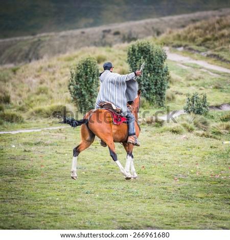 QUITO, ECUADOR - JAN 4, 2015: Unidentified Ecuadorian man shows different tricks riding a horse. 71,9% of Ecuadorian people belong to the Mestizo ethnic group - stock photo