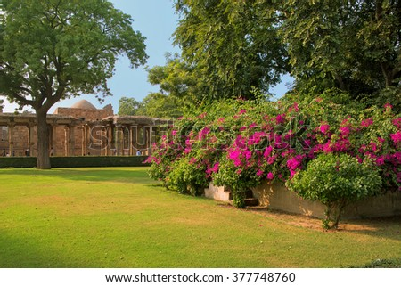 Qutub Minar complex grounds with flowers, Delhi, India - stock photo
