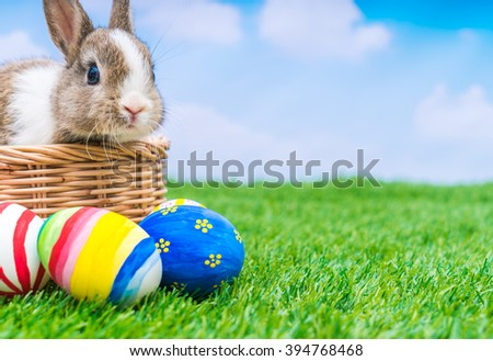 Rabbit and easter eggs in green grass with blue sky - stock photo