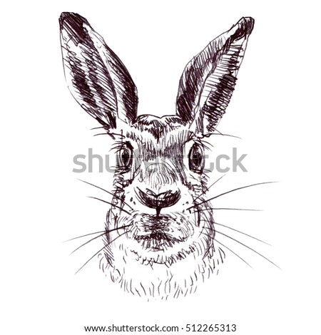Pen Drawing Stock Images Royalty Free Images Amp Vectors