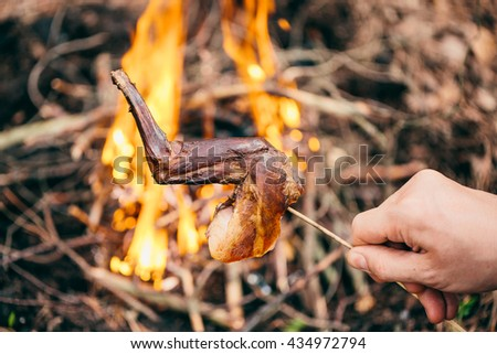 rabbit on the stick grilled in the fire. delicious summer picnic. bushcraft concept - stock photo