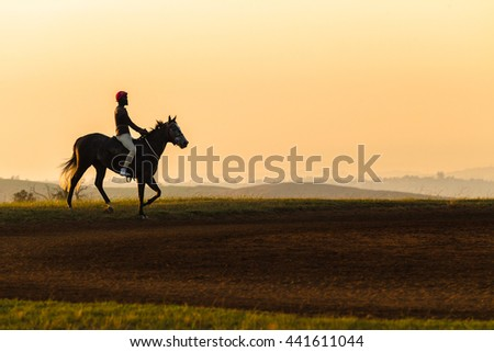 Race Horse Rider Silhouetted Race horse rider silhouetted morning dawn training landscape.