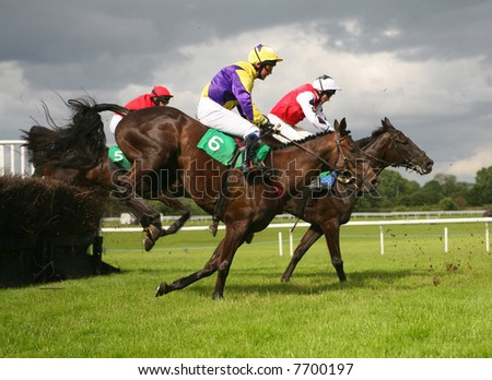 RACE HORSES - stock photo