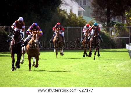 Race horses entering the home straight