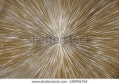 radial metal texture - stock photo