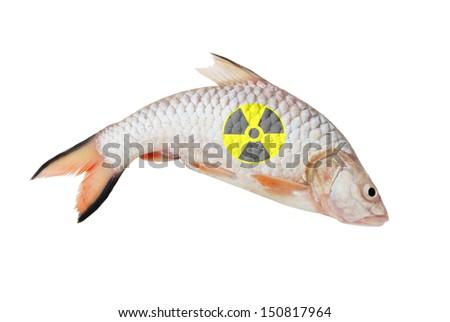 Radioactive fish isolated on white background - stock photo