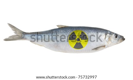 Radioactive herring fish isolated on white background