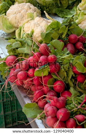 radishes and cauliflower at the local market - stock photo