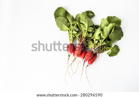 Radishes direct from the soil isolated on a white background - stock photo