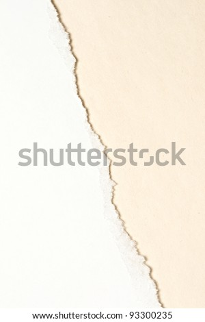 Ragged pieces of paper - stock photo