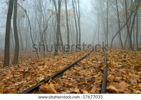 railing in autumn forest with mist