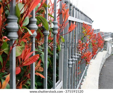 railing with red leaves in autumn - stock photo