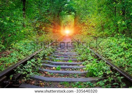 Railroad in forest near Klenav town, Ukraine - stock photo