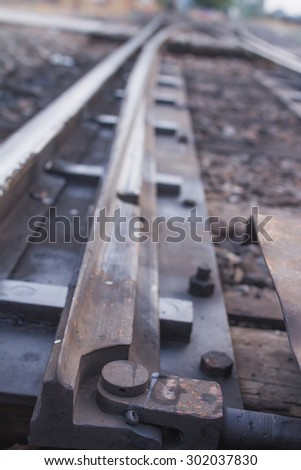 Railroad in the park - stock photo