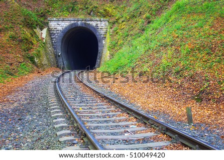 Railroad  leading towards small tunnel