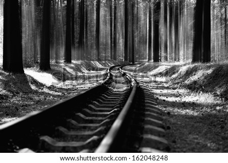 Railroad track in forest black &white - stock photo