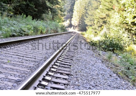 Railroad track winding through forest