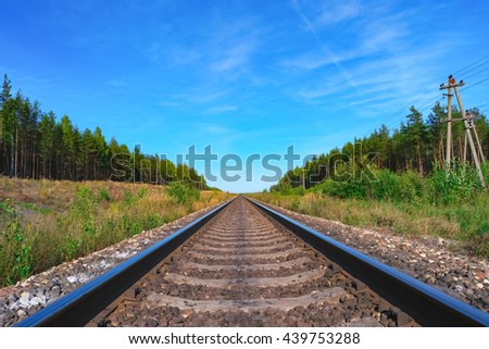 Railroad track with green forest on both sides - stock photo