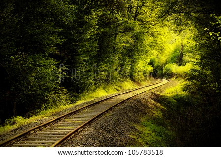 Railroad tracks through a forest in springtime - stock photo