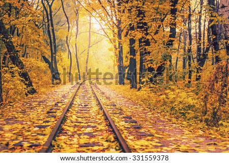 Railway or tramway track in a beautiful autumn park fog. dampness, bright warm autumn colors - stock photo